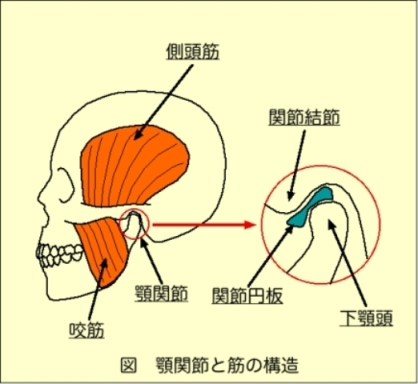 額 関節 痛 症
